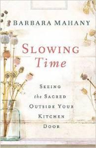 SlowingTimeBook